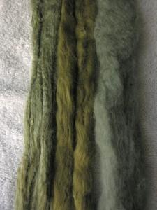 feb_29_2009_elderberries_sock_fibres